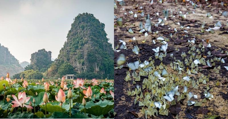 3 địa điểm đẹp nhất Ninh Bình dịp nghỉ lễ 30 4 và 1 5 sắp tới