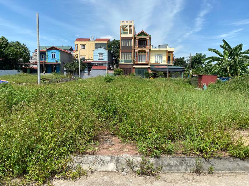 Giữa mùa dịch Covid-19 Nhà đầu tư đánh liều mua đất online