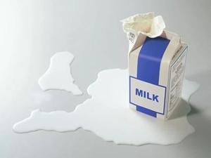 Chọn mua và bảo quản sữa tươi như thế nào là đúng cách